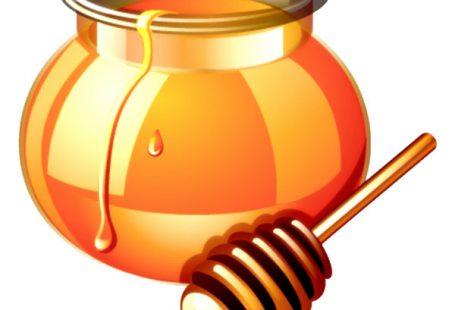 عسل خالص را چگونه بشناسیم
